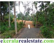 land property Choozhattukotta Pappanamcode salef