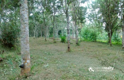 Well maintained 3 acre land with two story house for sale near vakeri