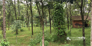 1 acre land in valad at 30lakh