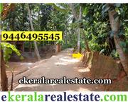 Trivandrum Neyyattinkara land sale