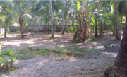 25cent Residential land for sale in Munnamkutty, Kayamkulam, Alappuzha