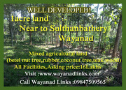 1acre land near to Sulthanbathery Wayanad--Wayanadlinks