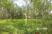 Well  demanding  10cent land for sale in Kenichira.