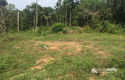 20cent house plot for sale near Mananthavady  at 20lakh