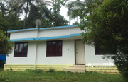 3BHK house with 2.80acre land for sale in Sorgakunnu(Vazhavatta)