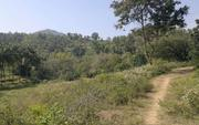 Total 8.5 acre good freehold parambu land excellent for organic farmin