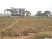 250 sq-yrd Plot for sale in TDI SECTOR 117 MOHALI