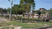 200 Sq yrd Plot in Mohali Sector 79