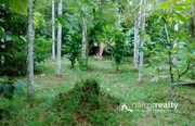 40 cent  land  in AKG  @ 32 lakh. Wayanad