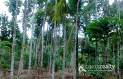 5 acre land @ 2 Cr in Bathery. Wayanad