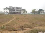 250 Sq Yard Plot Sector 117 TDi CIty