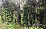 1 acre land @ 3500000 in Vellamunda. Wayanad