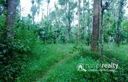3.50 acre  land @ 25lakh/acre  in Thonichal. Wayanad