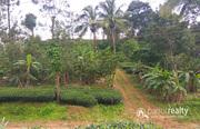 3.50 acre land @ 17lakh/acre in Kattimoola. Wayanad