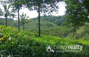 33 acre land for sale in Kattimoola @ 17lakh/acre. Wayanad