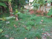 3.50 Cents for sale at Kottiyam junction,  Near Holy Cross Hospital, Kol