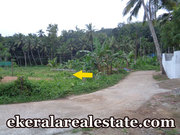 Palode Nedumangad  land for sale