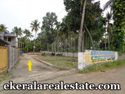 Pappanamcode 6 Cent land for sale
