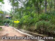 Kollamkonam Peyad  40 cents rubber land for sale