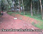 Kattakada 20 cents residential plot for sale