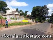 20 cents house plot sale at Pathamkallu Nedumangad