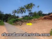 Land Sale at Subhash Nagar Powdikonam