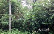 1 acre land @ 35 lakh in Ambalavayal. Wayanad