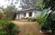 2.50 acre land with 3bhk house @ 85 lakh in Nadavayal. Wayanad