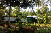 Well demanding 4.23 acre Farm for sale in Pakkam @70lakh. Wayanad