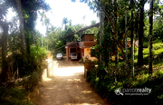 4 acre land with 3bhk house in Nadavayal @ 1.60Cr. Wayanad