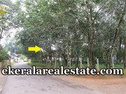 50cents hosue plot sale Panachavila Anchal Kollam Kerala