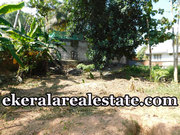 Chavadimukku Sreekariyam  10cents land for sale