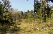 23.75cent house plot in Kayakkunnu @ 24lakh. Wayanad