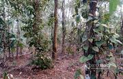 well 44 cent land in Karingari,  Tharuvana @ 75000/cent. Wayanad