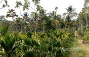Well demanding 2 acre land in Kenichira @  26lakh.Wayanad