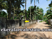 8 lakhs per cent land 4 cents sale at Kurishadi Junction Nalanchira