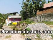 Kongalam Punnakkamugal low price 4 cents land for sale