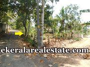 Mangattukadavu Perukavu road froontage 9 cents land for sale