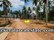 Villa plot  cents sale at Near Kundamankadavu Bridge Thirumala