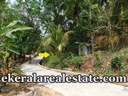 Kollamkonam Peyad 40 cents  rubber land for sale