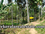 Enikkara Peroorkada Trivandrum 22 cents house land for sale