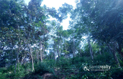Excellent 5 acre resort purpose land in Kattimoola @ 2.25 Cr.