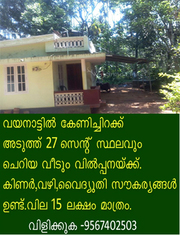 27 cent plot with old house for sale at Kenichira, Wayanad