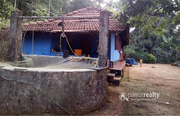 Excellent 5 acre land in Makkiyad @  75lakh. Wayanad