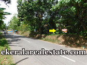 Residential plot 24 cents 2.25 lakhs per cent land for sale