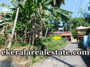 Road Frontage  5 cents  Land Sale at Muttada